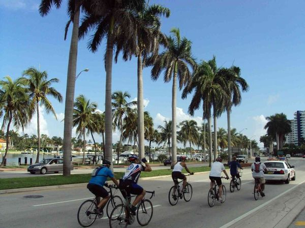 Bike Miami Month Calendar and Miami Beach Bicycle