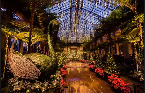 Longwood Gardens A Photo Rich Site For All Seasons