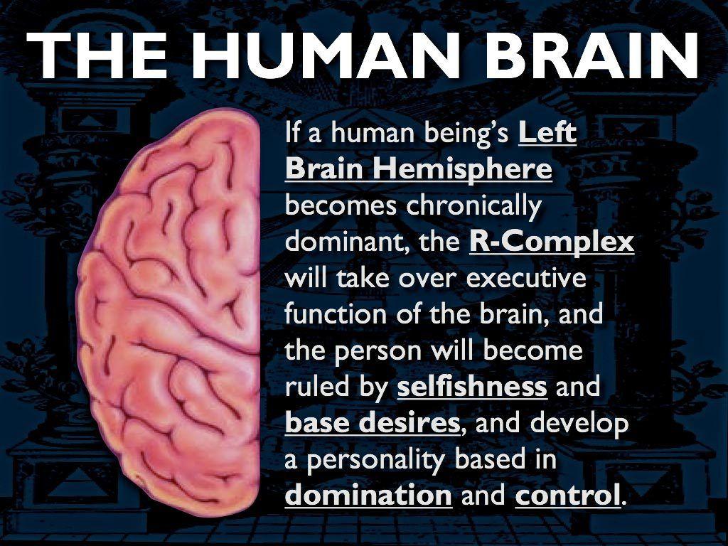 right brain vs left brain dominance