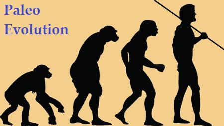 Эволюция по дарвину.  В эпоху дарвина.