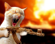 Tommy Gun Kitty Fun (john v.