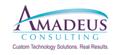 Amadeus Consulting